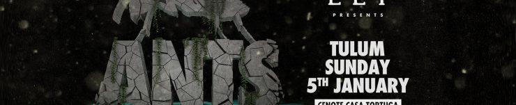 ANTS-TULUM-FBCOVER-1723x656px